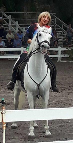 Ms Herrmann putting a Stallion through its paces at the Lipizzan ranch near Myakka City