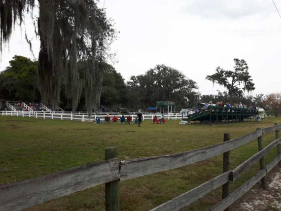 Guest viewing stands at the Lipizzaner ranch near Sebring FL.