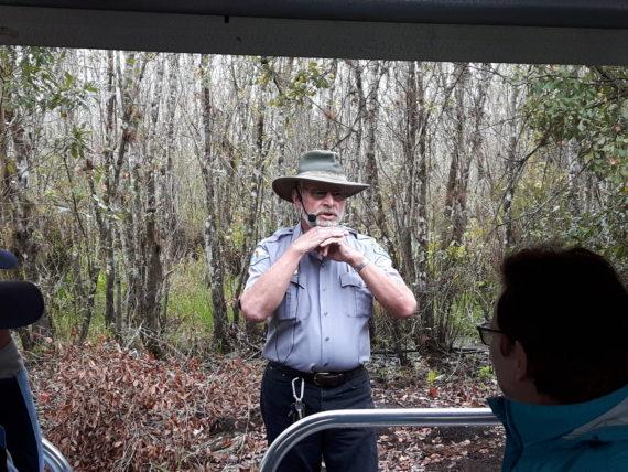 Highlands Hammock State Park volunteer tour guide